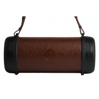 Lesenz Bluesenz HYPE outdoor Wireless speaker Bruin